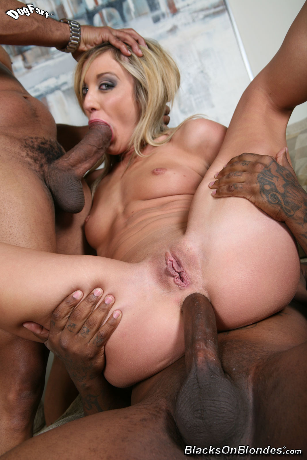 blacks on blonds sex