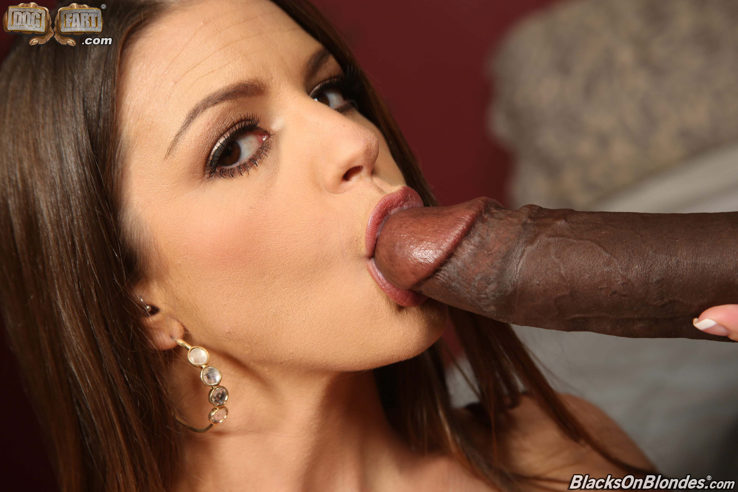 galleries blacksonblondes content brooklyn chase 4 pic 12