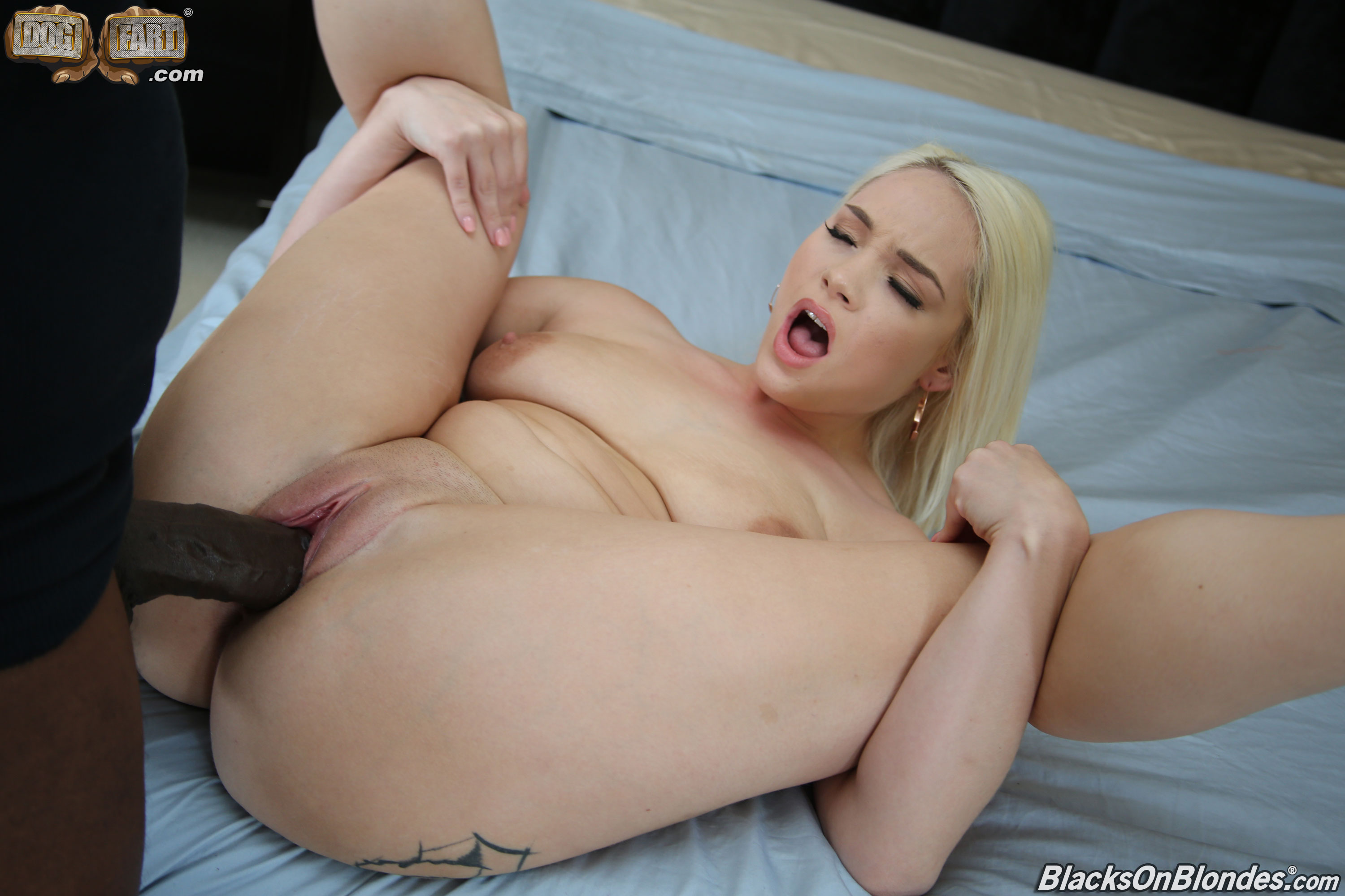 http://galleries.blacksonblondes.com/content/hadley_viscara/pics/pic/25.jpg