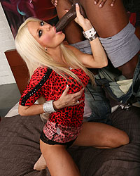 Black Monstercocks Helly Mae Hellfire
