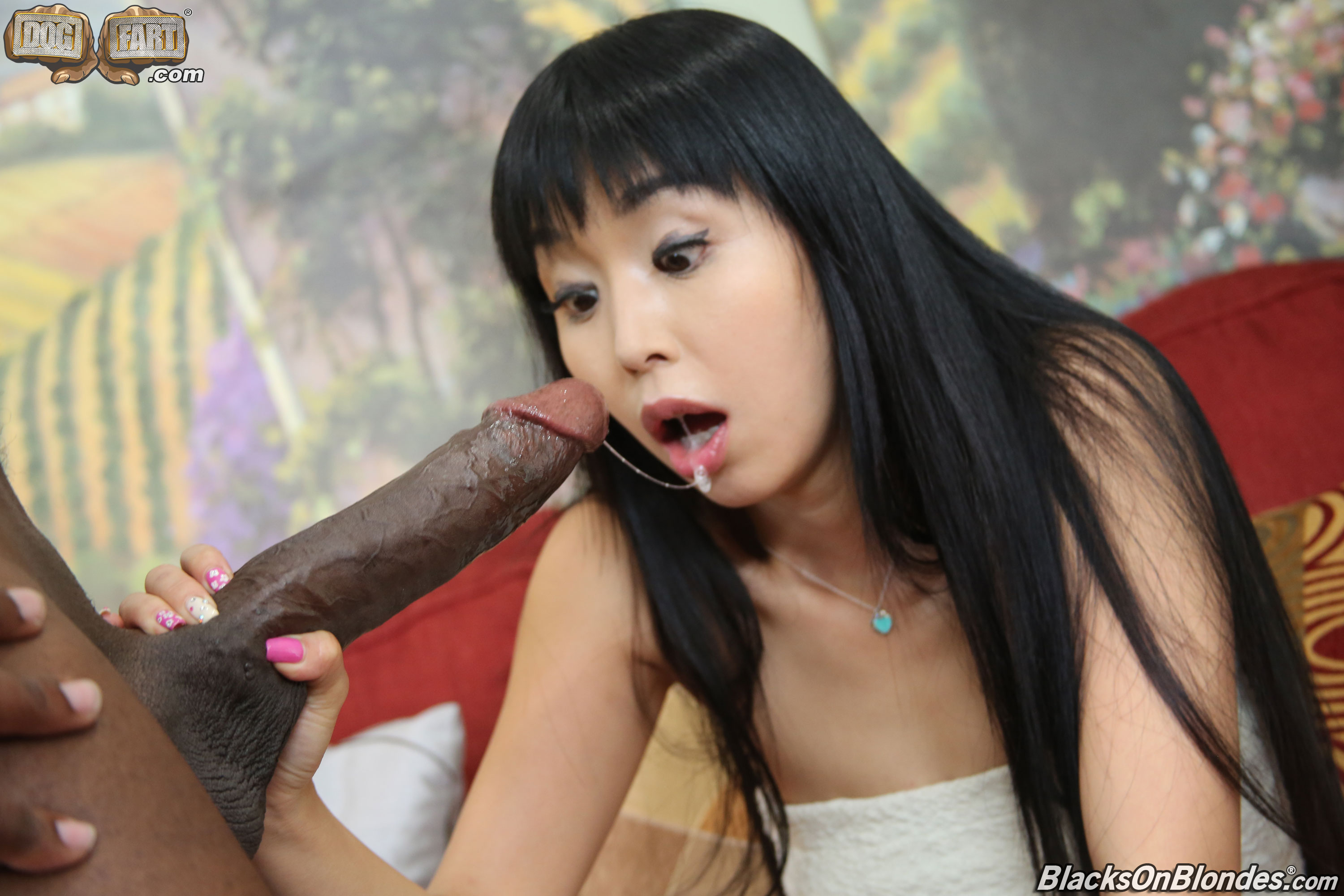 Black dick on asia, tia carrere cameltoe
