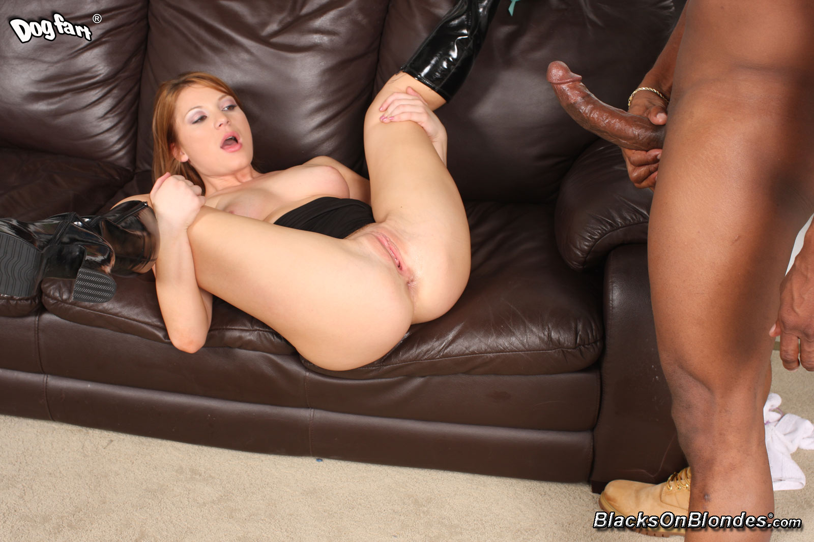 Aurora snow black cock that